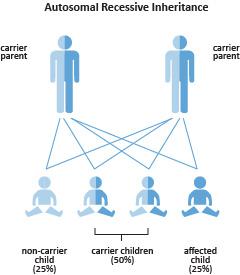 Usher Syndrome Carrier